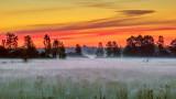 Misty Sunrise 20140628