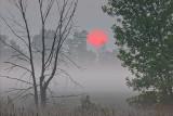 Foggy Sunrise P1060565