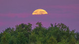 Setting Moon 20140712
