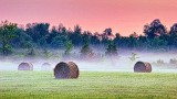 Bales In Misty Sunrise 20140718