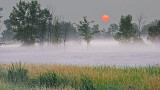 Red Sun Rising Over Mist 20140803