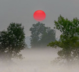 Red Sun Rising Balancing Act P1070843