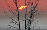 Sunrise Over Ground Fog P1080624
