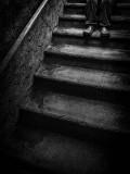 Basement Stairs P1080910