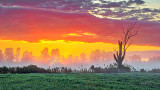 Misty Sunrise 20140824
