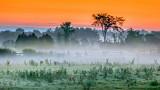 Misty Sunrise P1090572-4