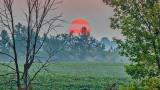 Red Sun Rising 20140905