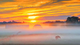 Misty Sunrise 20140925