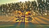 Sunrise Sunrays P1100804