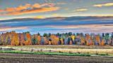 Autumn Landscape At Sunrise 20141023