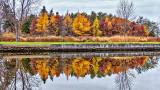 Autumn Reflected 20141104