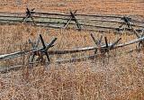 Split-Rail Fence P1020724-6