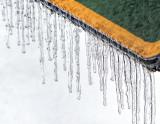 Frozen P1050471-3
