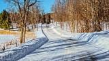 Winter Back Road P1110402-4