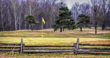 Yellow Flag DSCF19530-2