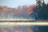 Otter Lake At Sunrise DSCF01071
