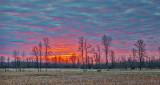 Red Sky Sunrise P1110062-4