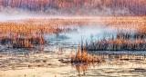 Misty Swale At Sunrise P1110125-7