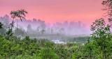 Foggy Wetland At Sunrise P1140618-20