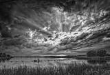 Evening Sunrays DSCF20944-6BW