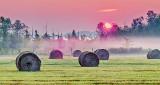 Bales In Misty Sunrise P1160856-8