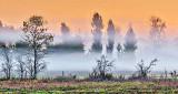 Sunrise Ground Fog P1190006-8