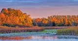 Otter Creek At Sunrise P1190722