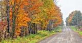 Autumn Back Road P1200169-71