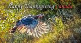 Happy Thanksgiving Canada P1200411