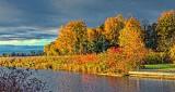 Kilmarnock Autumn P1200704-6