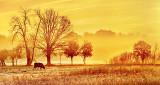 Sunrise Pasture P1210133-5