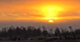 Clouded Sunrise P1210462-4
