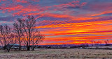 Country Sunrise P1220722-7
