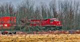 CP Engine 9371 (P1230112-4)