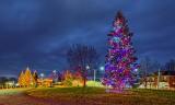 Victoria Park Christmas Tree 47574-82