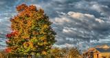 Autumn Clouds P1200833-5