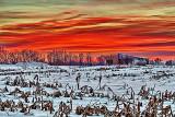 Winter Sunrise P1240297-9