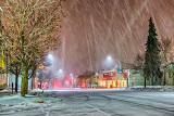 Snowy Night P1020360-2