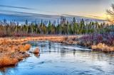Brassils Creek At Dawn P1040909-11