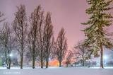 Snowy April Night P1050139-41