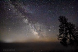 Milky Way Galactic Core Over Ground Fog 48257