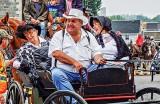 Parade of Horses DSCF13443