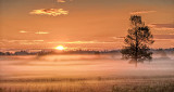 Sunrise Ground Fog P1090273-5