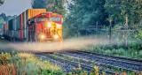 Freight Train In Wisp Of Mist P1090300-2