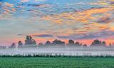 Ground Fog At Sunrise P1090745-7