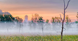 Sunrise Ground Fog P1110393-5