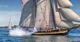 Tall Ships Festival 2016 (P1120450-2)
