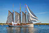 Tall Ships Festival 2016 (P1120362)