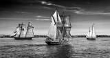 Tall Ships Festival 2016 (P1120500BW)