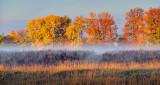 Autumnscape P1130337-9